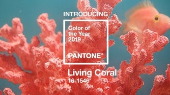Pantone, provider of professional colour standards and digital solutions for the design industry, announced PANTONE 16-1546 Living Coral as the Pantone Colour of the Year 2019.